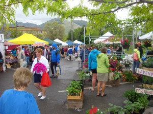 The Clark Fork Market, Missoula