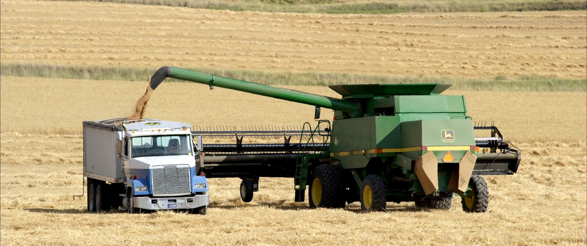 Combine and Wheat truck