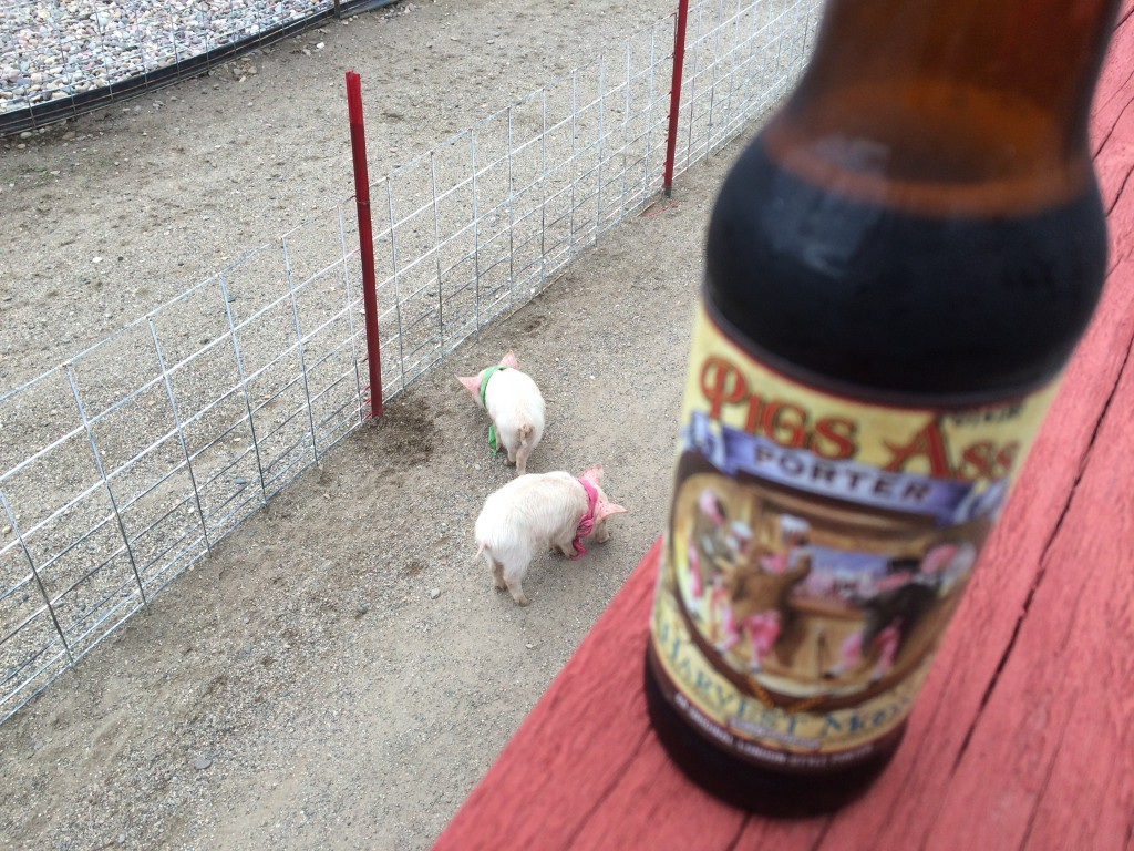Pigs and Pig's Ass porter